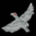 Cascade_bird2.png