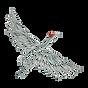 Cascade_bird.png