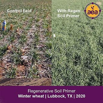 Soil Primer 2021_KellyKettnerPhotos copy