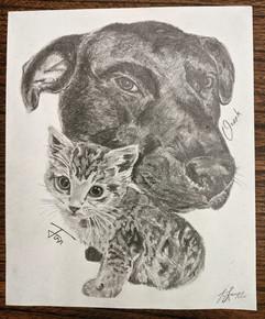 Ozark&Finn Pet Portrait.jpg