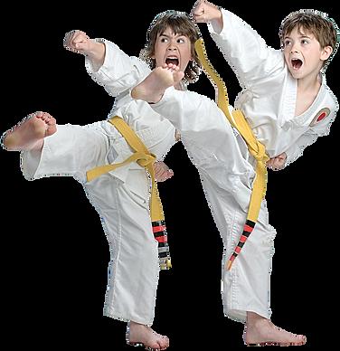 taekwondot.png