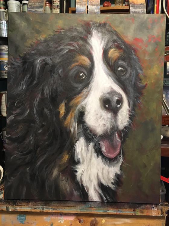 Portrait of a client's best friend