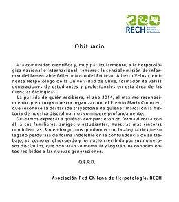 Obituario RECH, Alberto Veloso.jpg