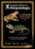 Afiche X Congreso para RRSS.jpg