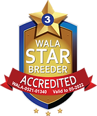 Pemberley House Accredited 2022.png