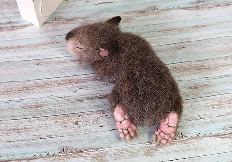 #7 Baby Wombat Feltorial