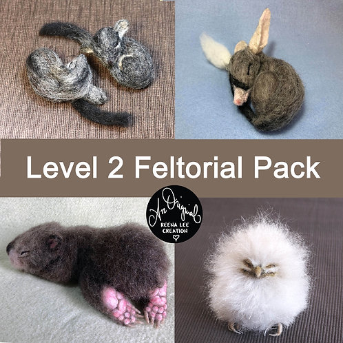 Level 2 PACK, Phascogale, Bilby, Wombat, Tawny Frogmouth