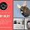 Thumbnail: Baby Bilby Felting Kit