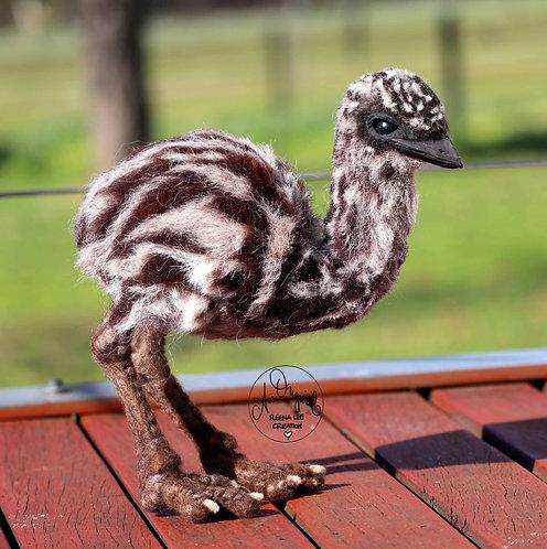 Bert, the Emu Chick