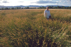 Marsha Anderson in a field