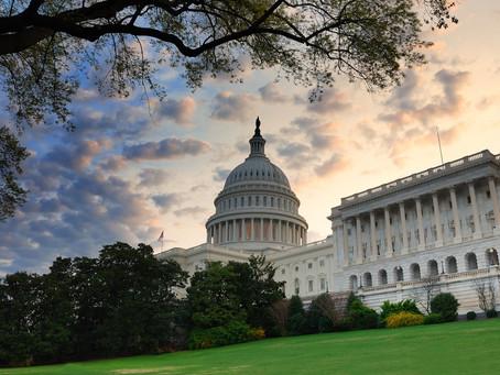 Social and political factors driving company financial plans