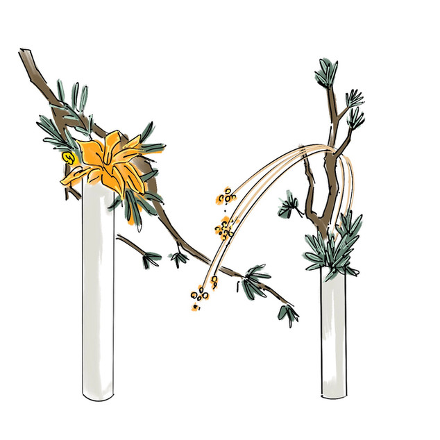 Alphabet Ikebana: M