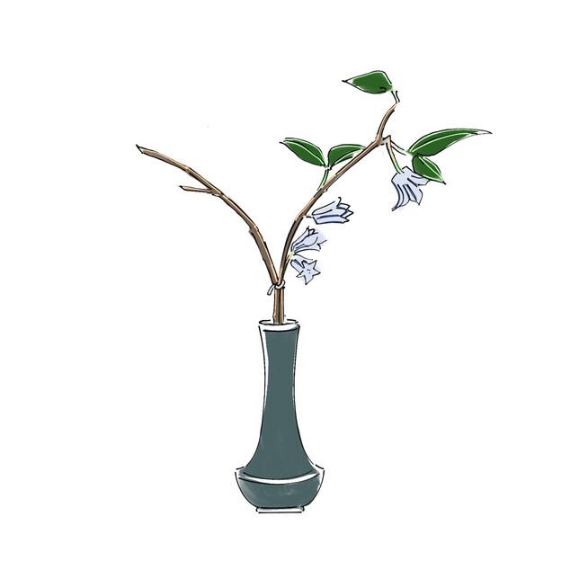 Alphabet Ikebana: Y