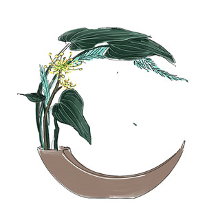 Alphabet Ikebana: C