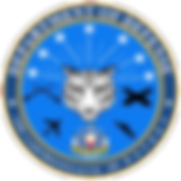 Department-Of-Defense-Seal.png
