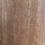 Thumbnail: Blackbutt (Pacific)