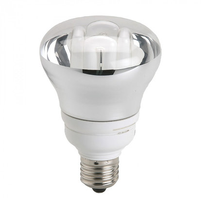 R80 Compact Fluorescent Lamp