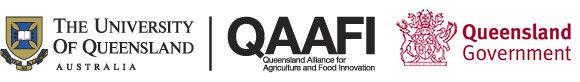 qaafi-uq-daf-logo.jpg.jpeg