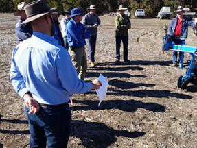 Tactical agronomy research update at Breeza