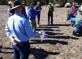 Great farmer participation at Warra field walk today