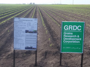 Slides from GRDC Upates 2017