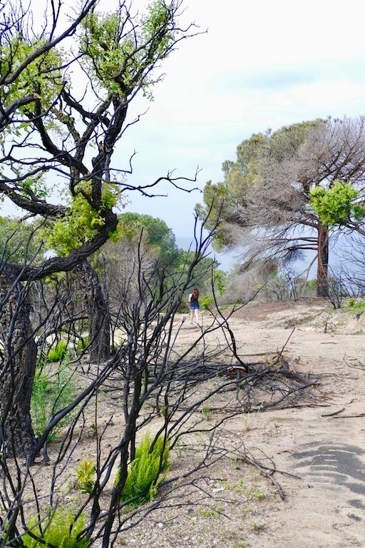 Balade au Cap Lardier