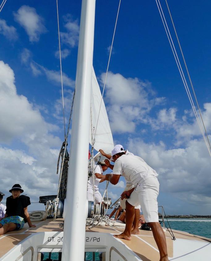 Catamaran Waka Sailing