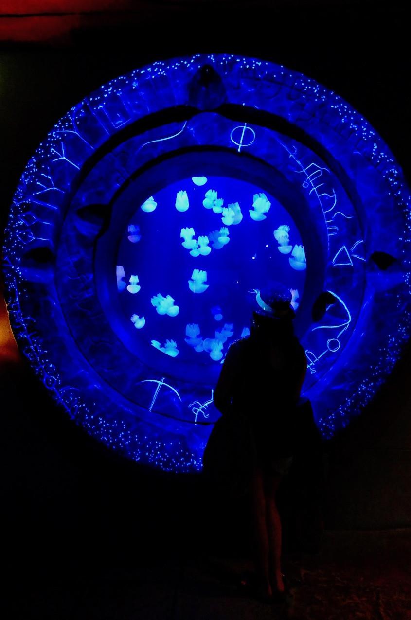 Aquarium Atlantis Dubaï