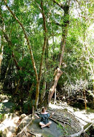 Waterfall de Phu Quoc