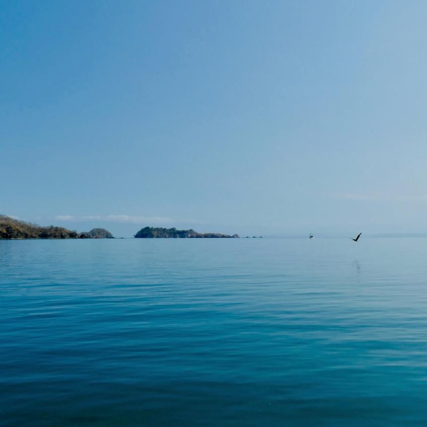 Excursion à Isla Tortuga