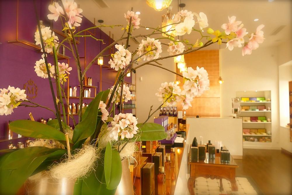 L'atelier des parfums Molinard à Nice