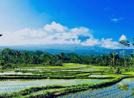 """Le Bali """"authentique"""" : de Sidemen à Candidasa"""
