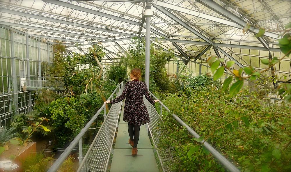 Jardin botanique d'Amsterdam
