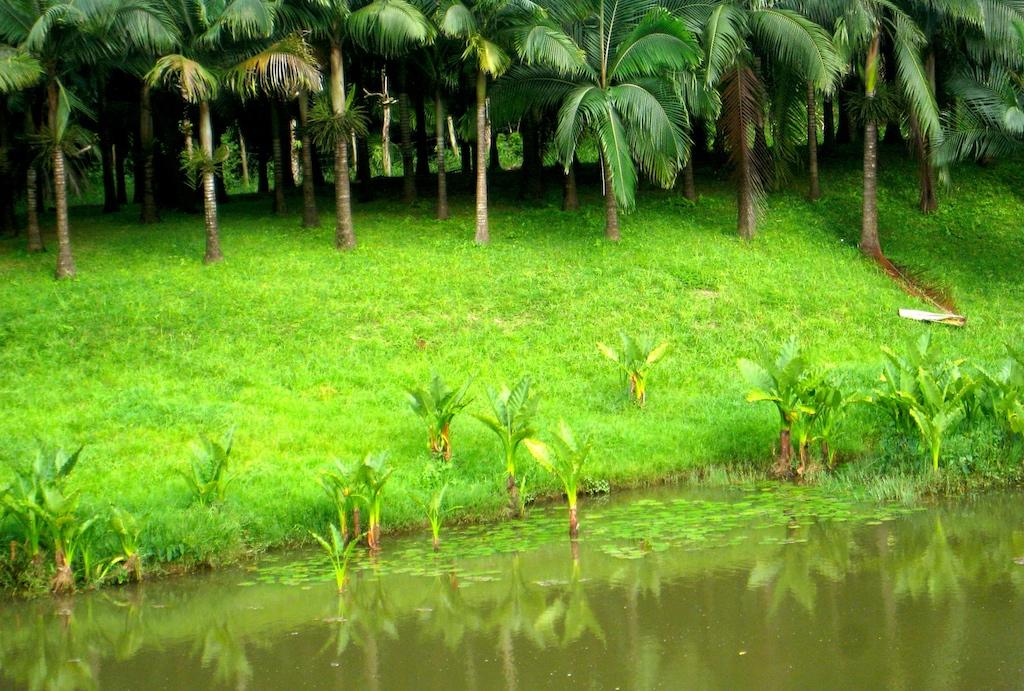 Domaine de l'Etoile à L'île Maurice