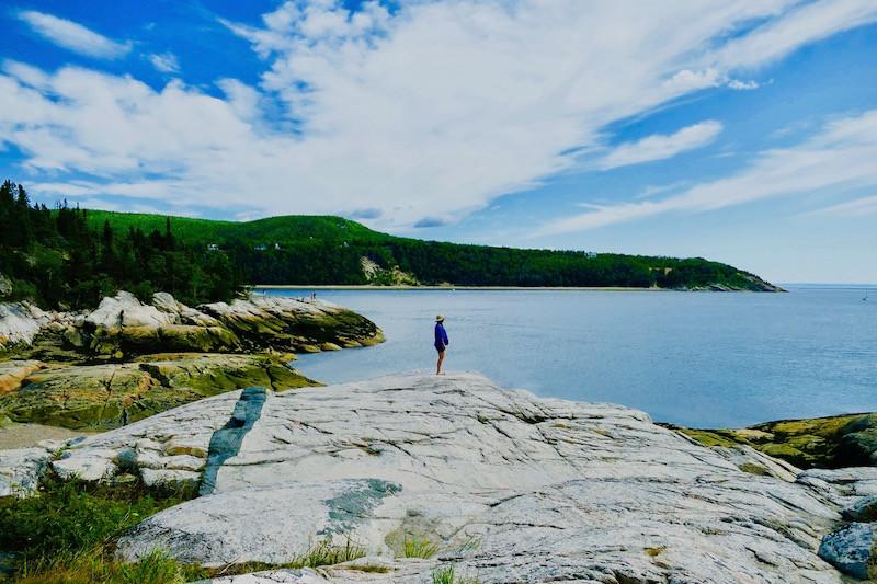 observation des baleines depuis la côte à Tadoussac