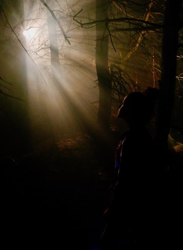 Spectacle sons et lumières