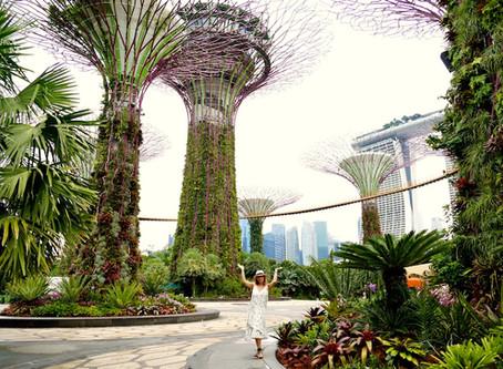 Singapour, une escale à découvrir !