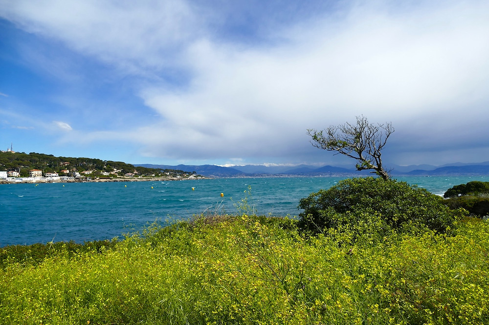 Le cap d'Antibes, sentier des douaniers