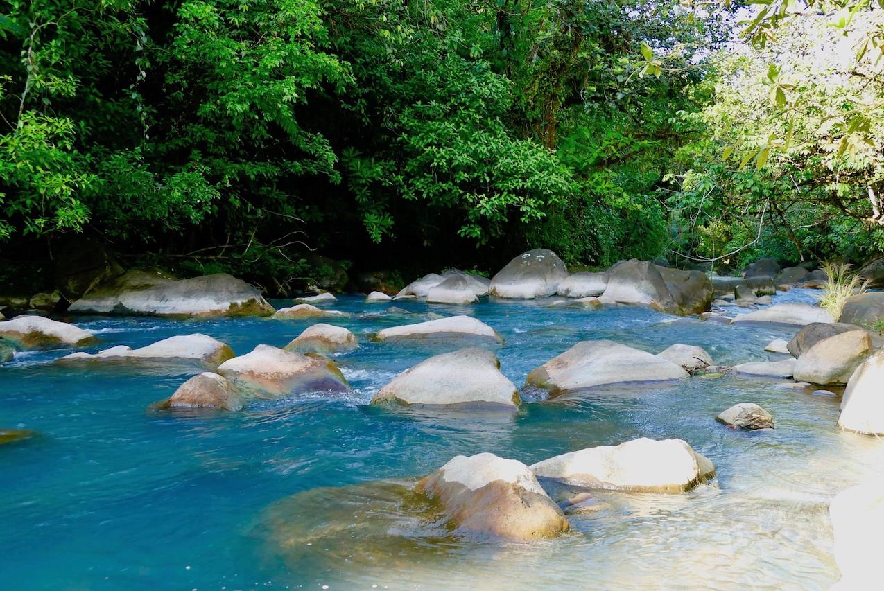 Baignade dans le Rio Celeste