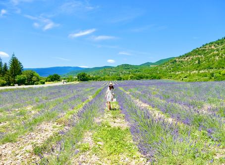 La Bonne Etape : Une halte gourmande en Provence