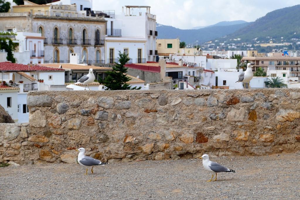 Dalt Vila à Ibiza