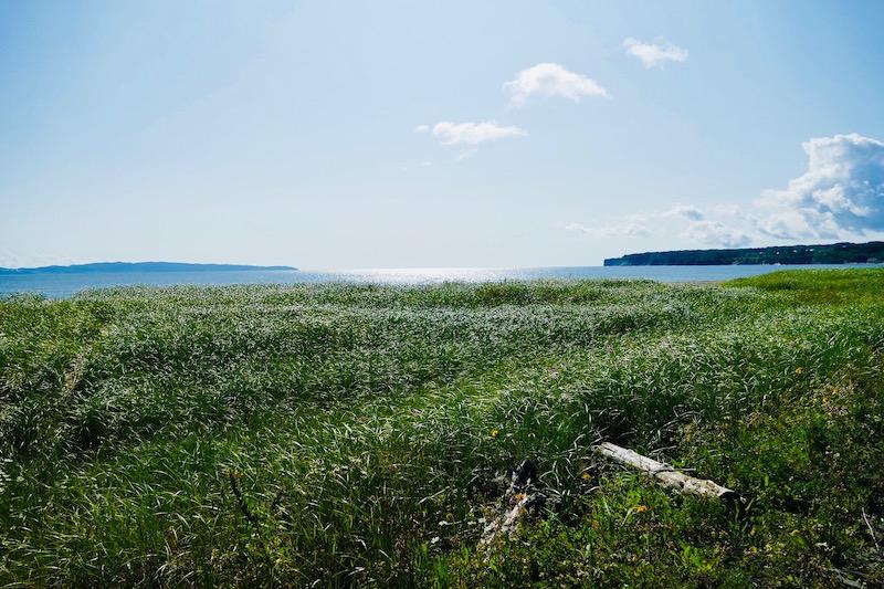 Les lagunes près de Gaspé