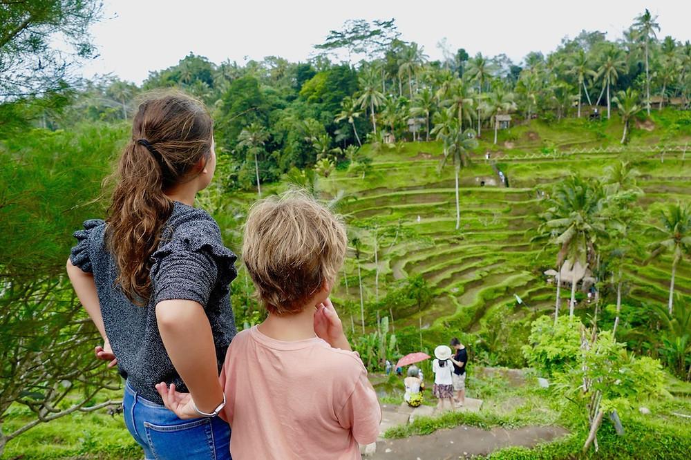 Les rizières de Tegallalang à Ubud