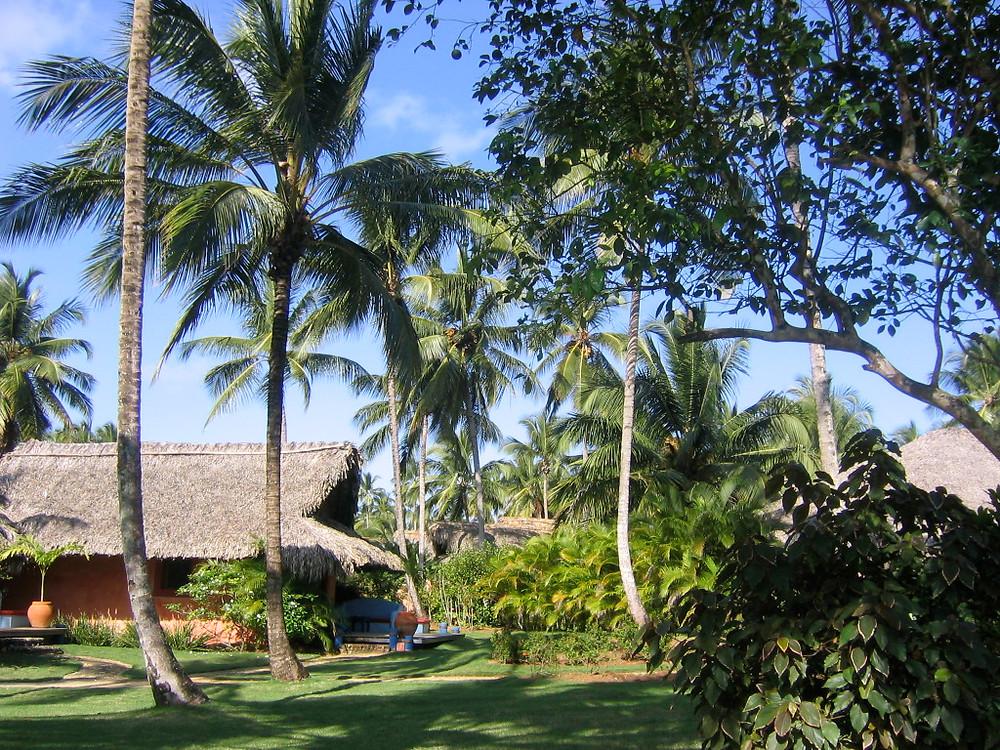 hôtel Bahia Las Ballenas