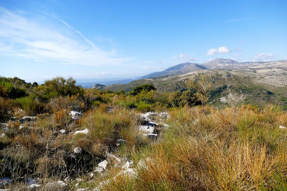 Sur le plateau du Baou de Saint-jeannet