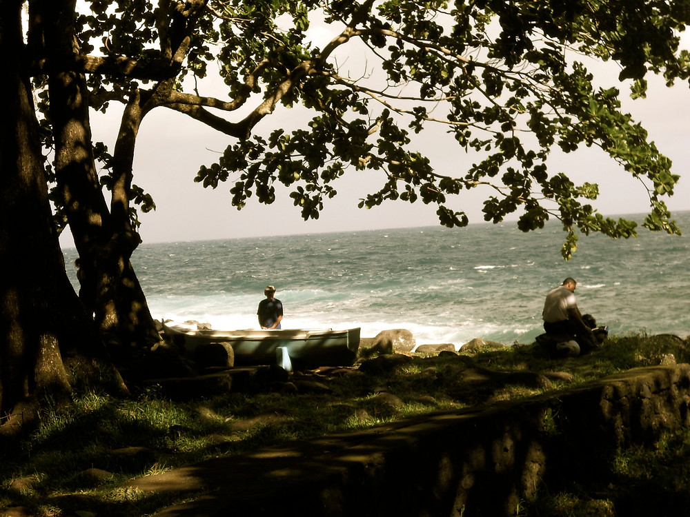 Anse cascade - La Réunion