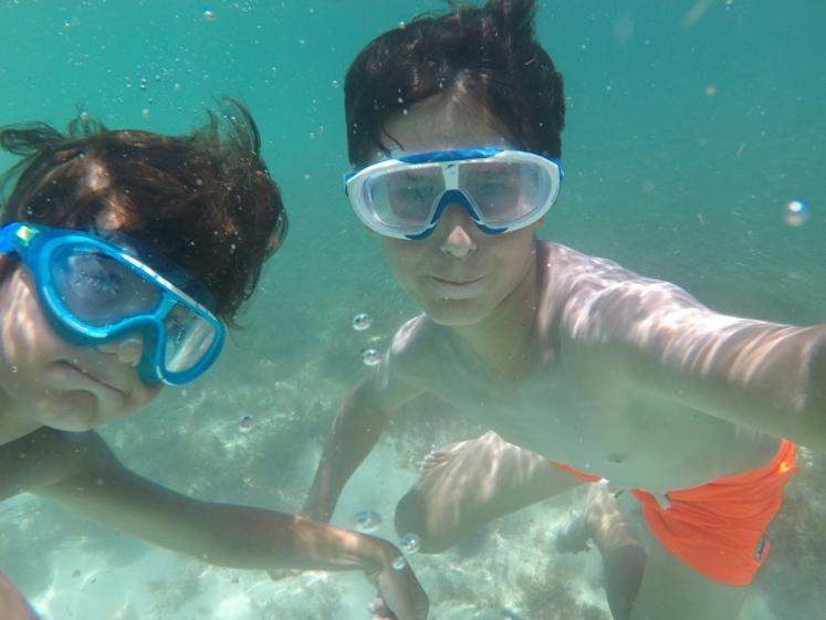 Snorkeling à Key West