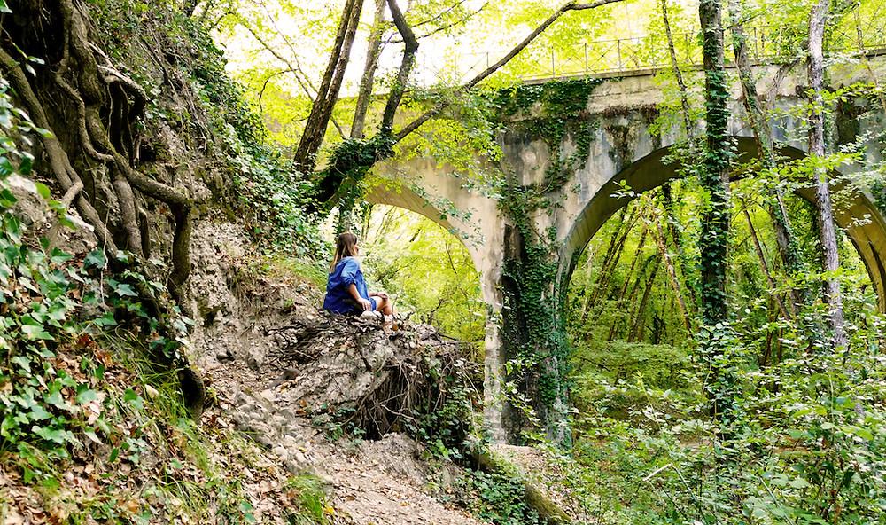 L'acqueduc du canal de la Vésubie