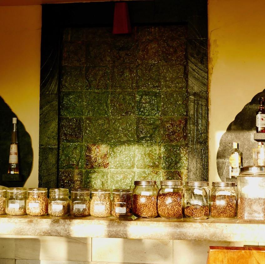 La plantation de café de l'hôtel