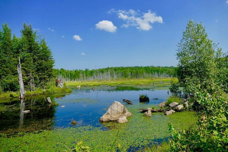 Lac de la Pourvoirie